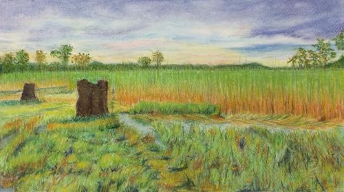 世田谷区在住のHさんのパステル画「草原の夕暮」