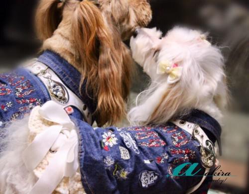 江戸川区から愛犬とペアのドックタグのオーダーメイド