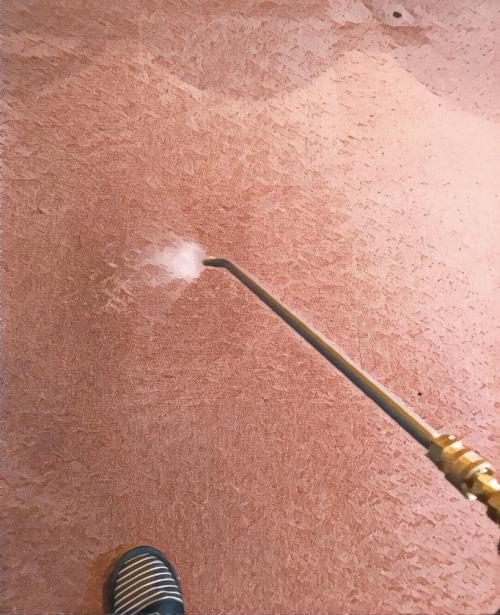 カーペット洗浄 汚れシミ取りは専門業者へ