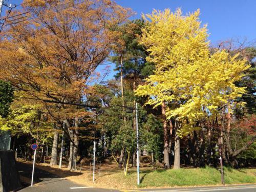 横浜市西区で電動ベッド、ロッカーなど回収しました