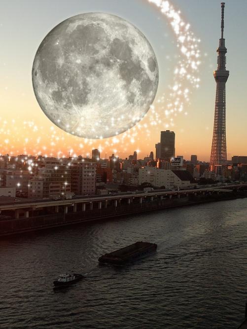本日満月です!