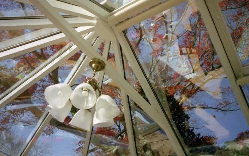 コンサバトリーの屋根を見上げる