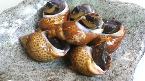 黒バイ貝!熱燗のお供に是非(^_^)V
