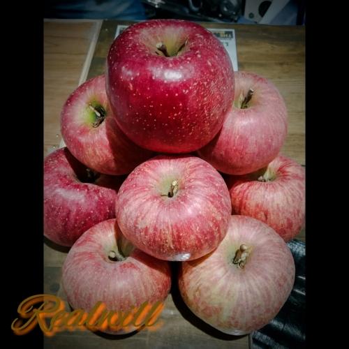 リンゴ頂きました*。()*。