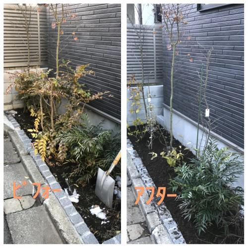 中目黒にてお庭の整理実行!!