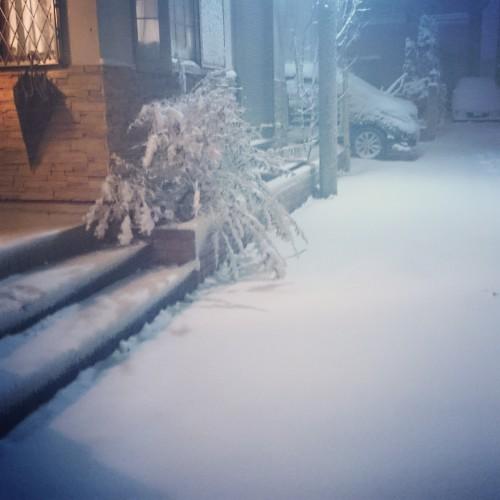 ★大雪!!ココロヘアースタッフの一日★