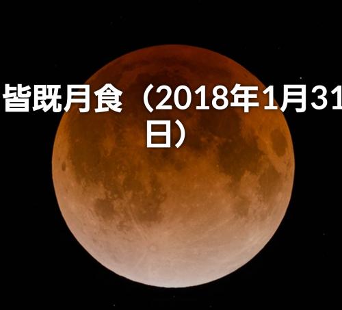 今日は満月です。