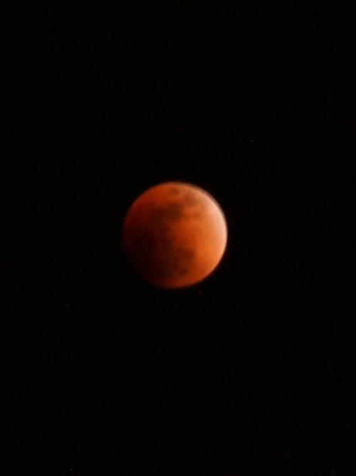 綺麗な皆既月食写真頂きました!