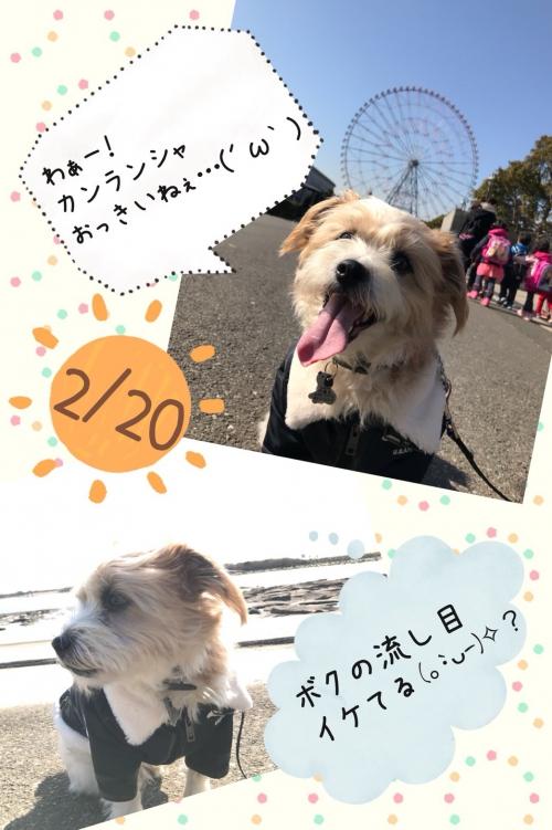 臨海公園に行ってきた!