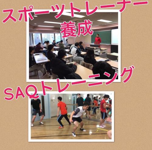 東京スポーツトレーナー養成専門学校