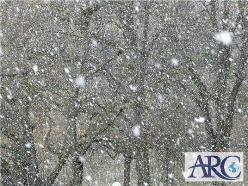北海道内全域で猛吹雪・大雪・暴風雪で大荒れ