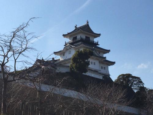 桜開花予報2018静岡県掛川市の情報