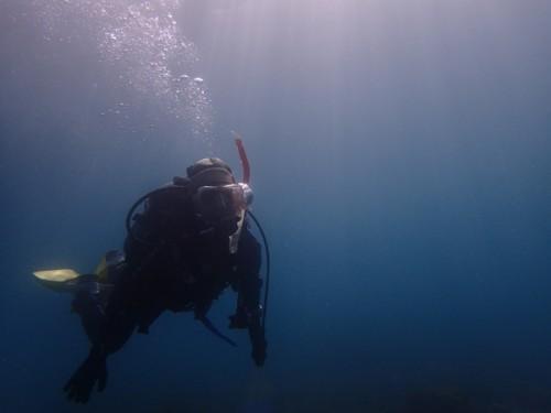 3/11(日) 平沢:海洋実習