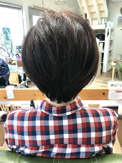 春ヘア  スウィートボブ☆  調布美容院