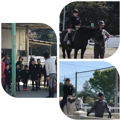 体験乗馬♪