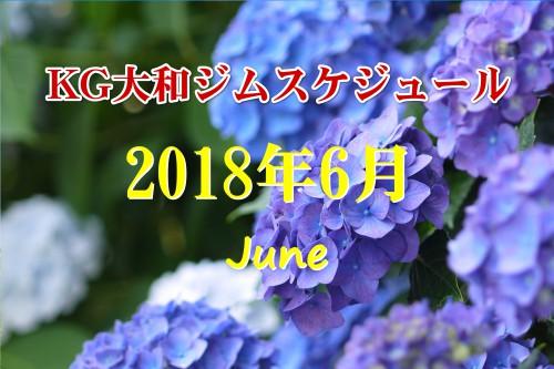6月のKG大和ジムスケジュール