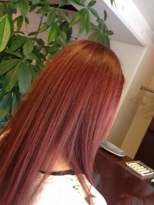 カラー  綺麗な赤