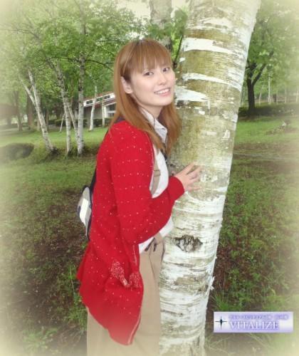 パワーと癒しの木〜白樺