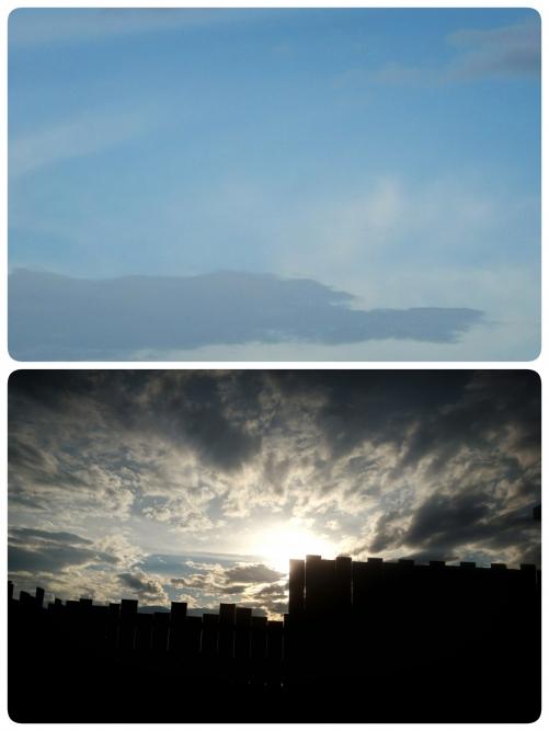 龍雲見つけました