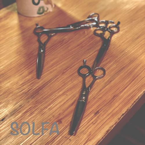 SOLFA7周年