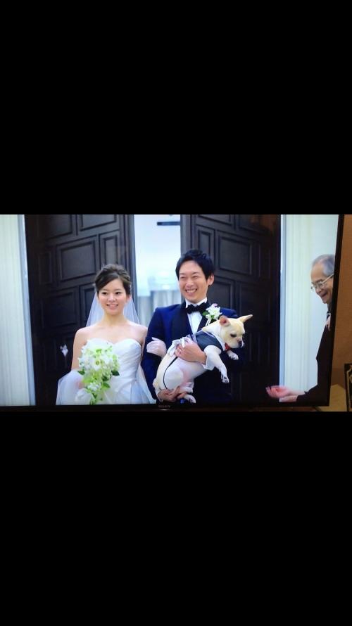 茅ヶ崎迎賓館結婚式花嫁