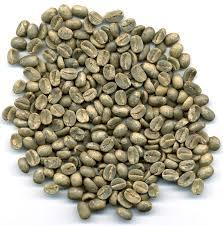 ボルビアのコーヒー