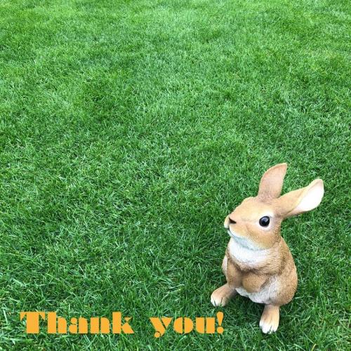 ご登場ありがとうございました!