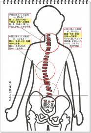 肩こり、背中の張り、首の痛み、体の歪み