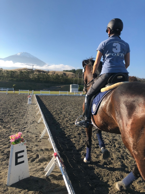 第70回全日本馬場馬術大会2018part1 入厩