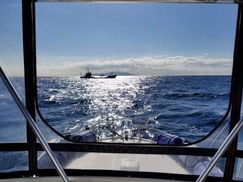 大島海域外国船籍の航路
