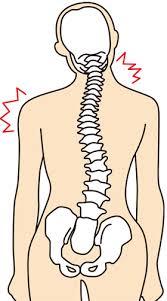 腰痛、肩こり、背中の張り カイロを体験しませんか?