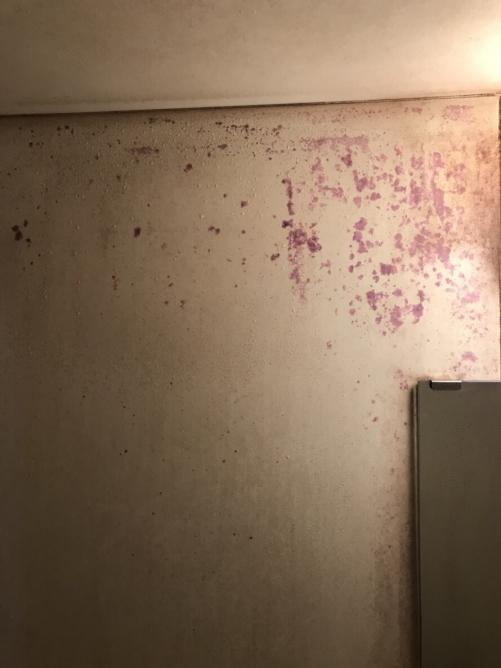 お風呂の赤い染み赤紫の染みについて