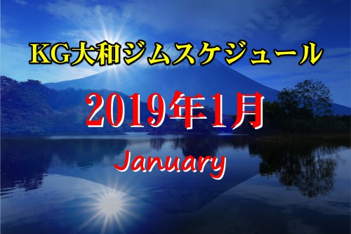 2019年スタート!1月のスケジュール