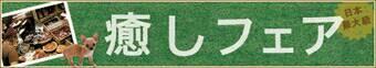 癒しフェア2019inOSAKA予約受付締め切ります