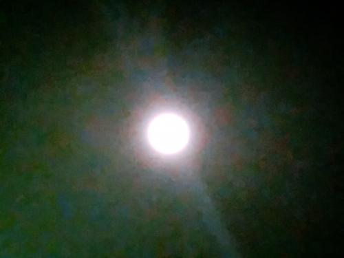 満月綺麗です。