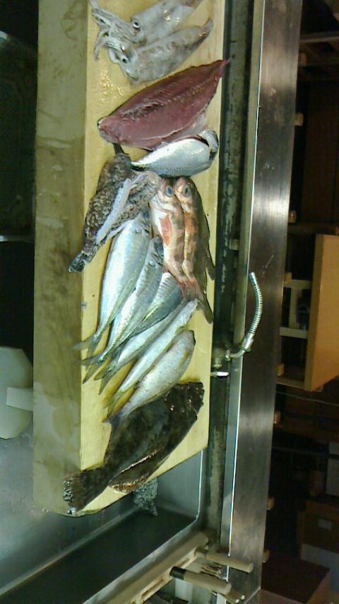 本日、築地で仕入れた鮮度ばっちりの鮮魚