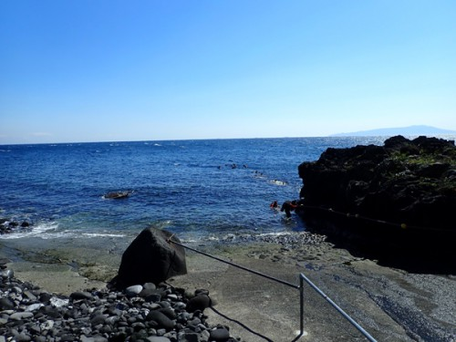 2019.03.31 伊豆海洋公園2ビーチダイビング