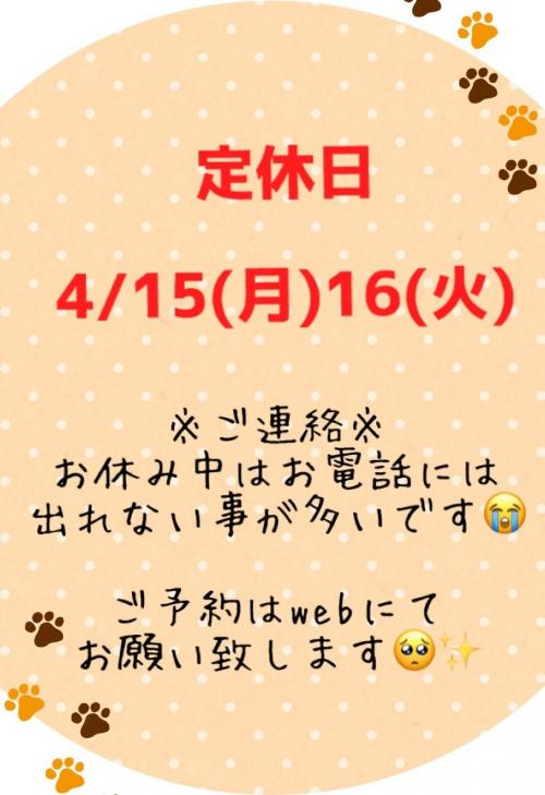 15(月)16(火)定休日