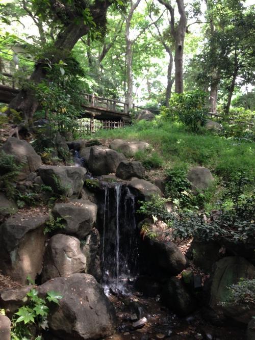都会のオアシスで癒される。有栖川公園