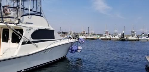 平塚フィッシャリーナは遊漁船の基地