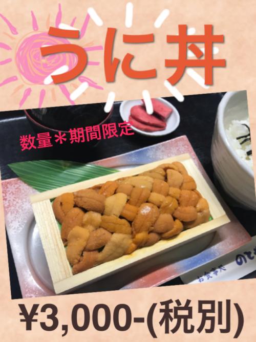 GW 道南観光 花見 桜
