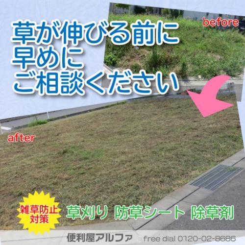 草が伸びる前に早目にご相談ください|除草|草刈り|さいたま市