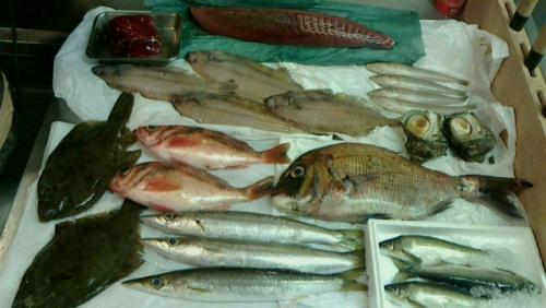 本日築地より入荷の選りすぐり鮮魚