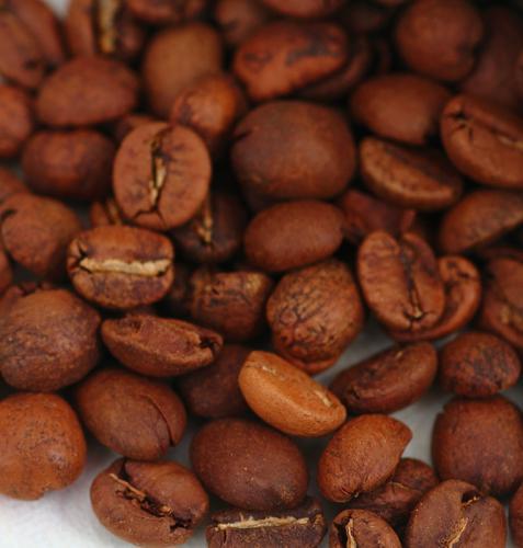 コーヒー豆の焙煎度による味の変化