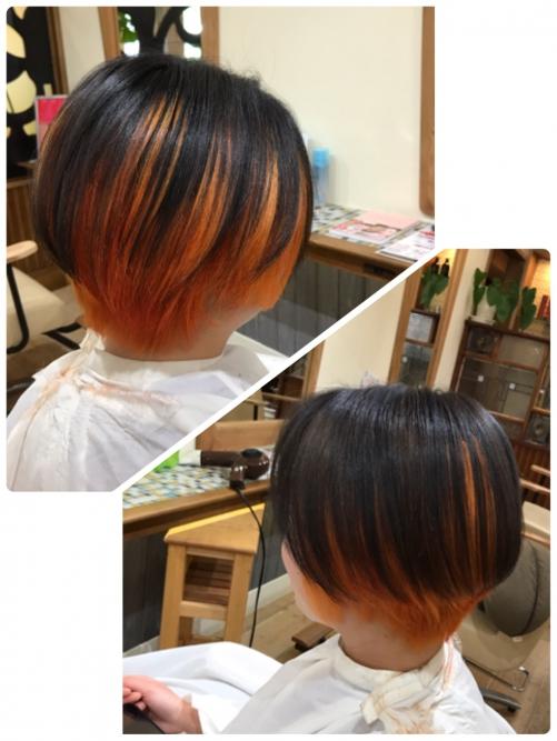 折尾 派手カラー