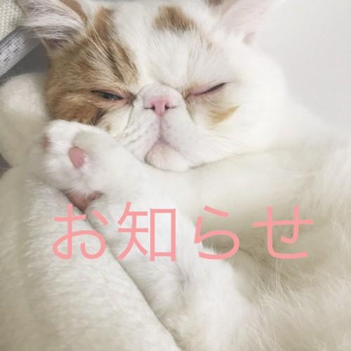 スタイリスト 宮田の休暇のお知らせ