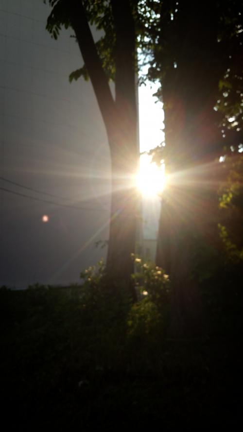 パワースポット苗場の夕陽