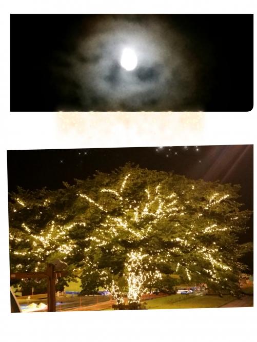 月の周囲が…