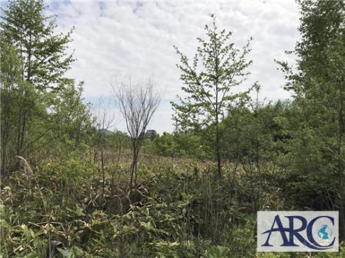 道東方面500坪以上の土地買取可能期間残りわずかです!!