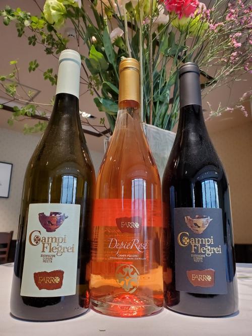 夏にぴったりワイン